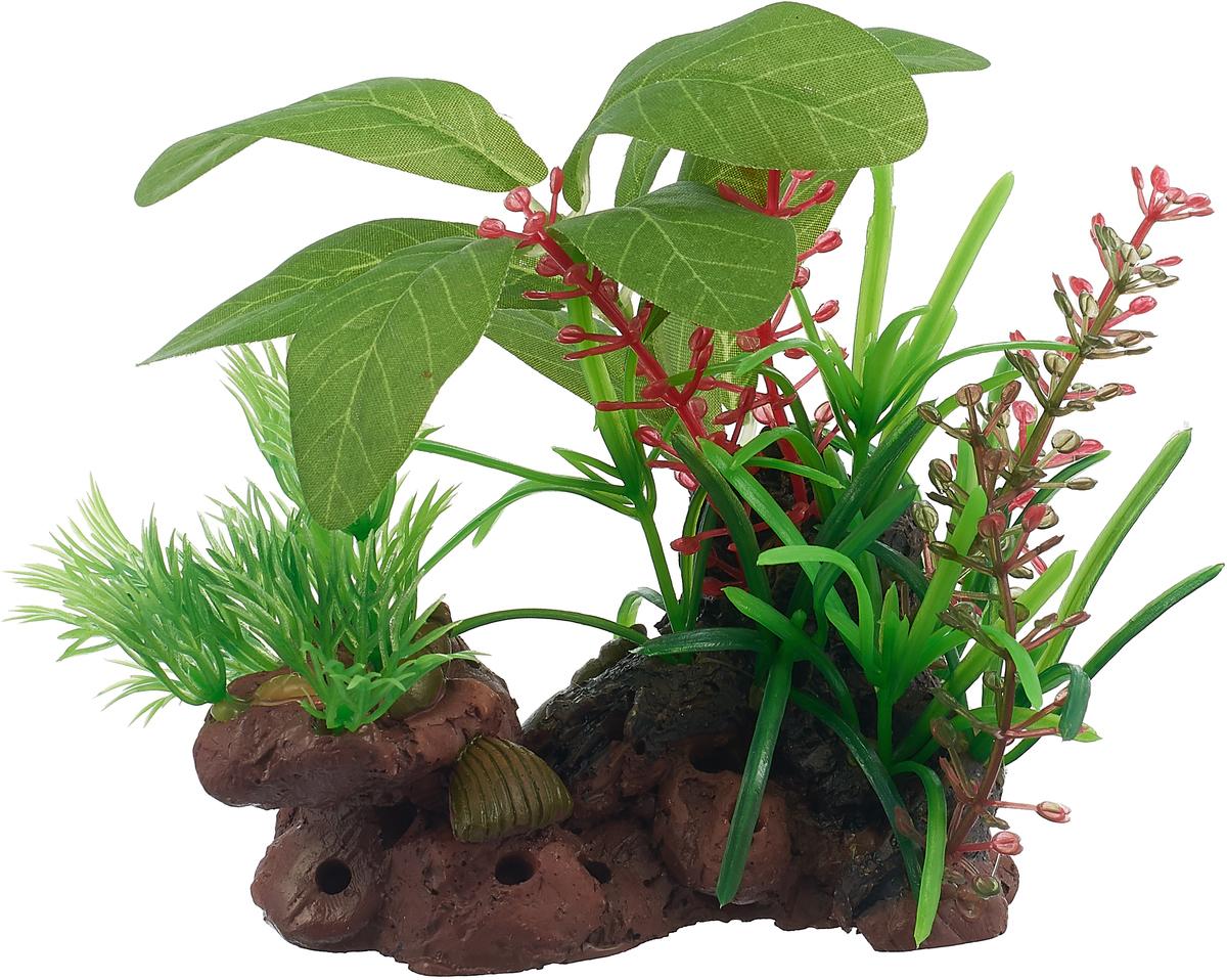 Растение №1