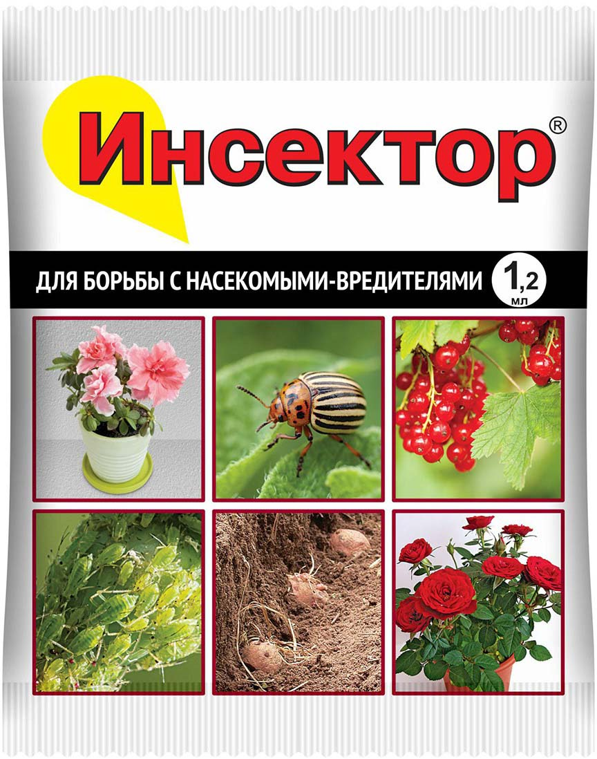 Препарат для защиты растений Ваше хозяйство Инсектор, от вредителей, 1,2 мл препарат для защиты растений ваше хозяйство корадо от вредителей 1 мл