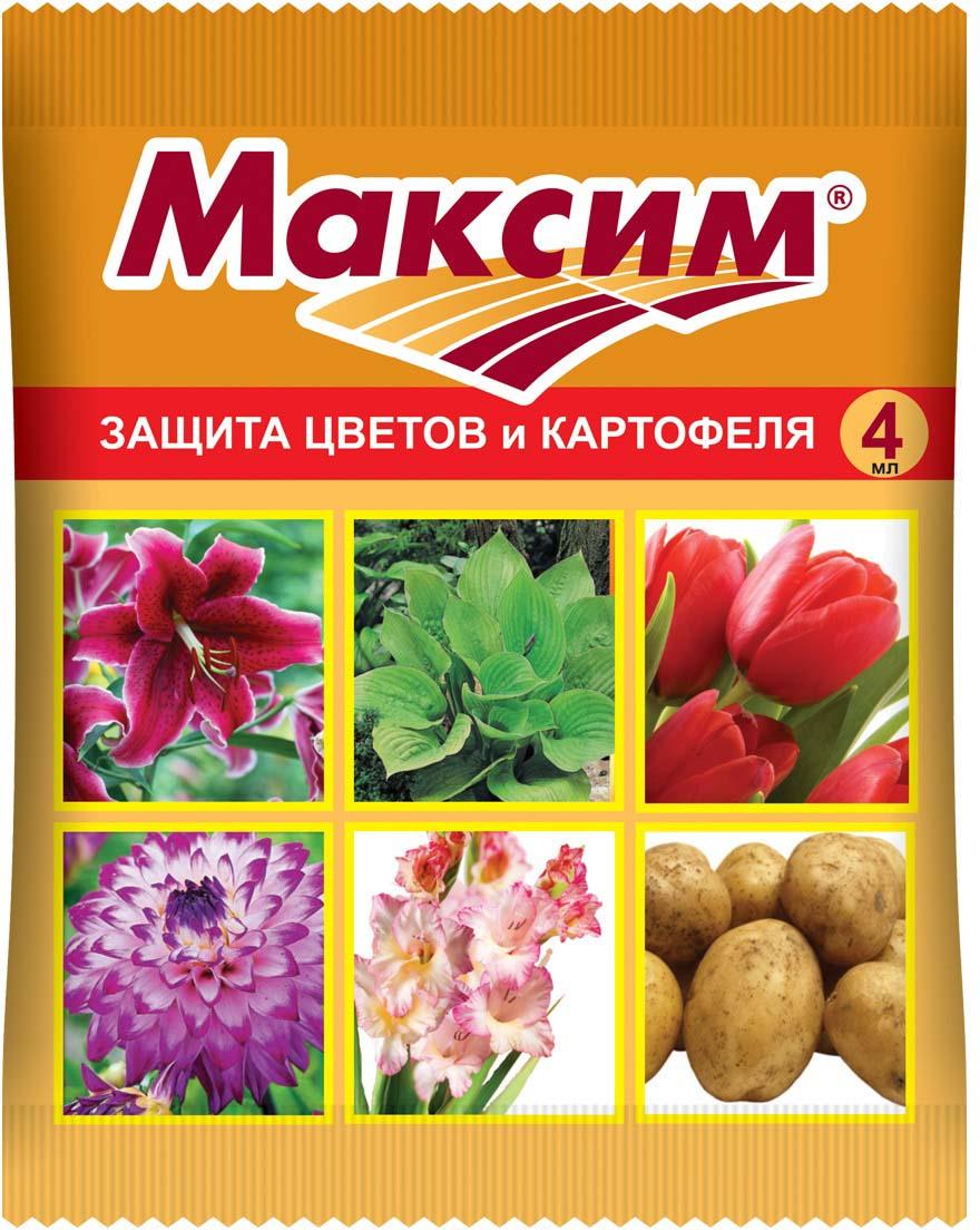 Препарат для защиты растений Ваше хозяйство Максим, от болезней, 4 мл защита от болезней