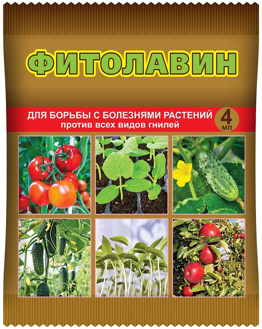 Препарат для защиты растений Ваше хозяйство Фитолавин, от болезней, 4 млVH1046Микробиологический препарат против всех видов гнилей. Уникальный спектр действия-борется с болезнями (бактериальный ожог, монилоз, бактериальный рак, некроз, угловатая пятнистость листьев), недоступными химическим фунгицидам. Овощи и плоды можно без опасений есть уже на второй день после обработки.