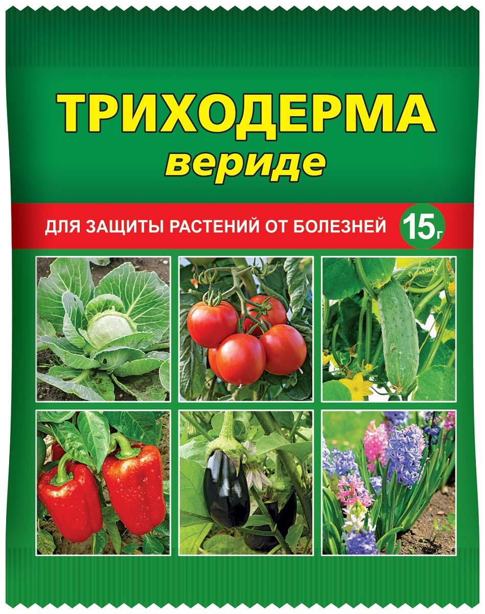 Препарат для защиты растений Ваше хозяйство Триходерма вериде, от болезней, 15 гVH1052Фунгицид для борьбы с семенной инфекцией, используется в качестве протравителя семян и стимулятора всхожести, для профилактической обработки растений от болезней (бактериоз, серая гниль, аскохитоз), для биологической дезинфекции почвы в защищенном грунте в сельском и личных подсобных хозяйствах.