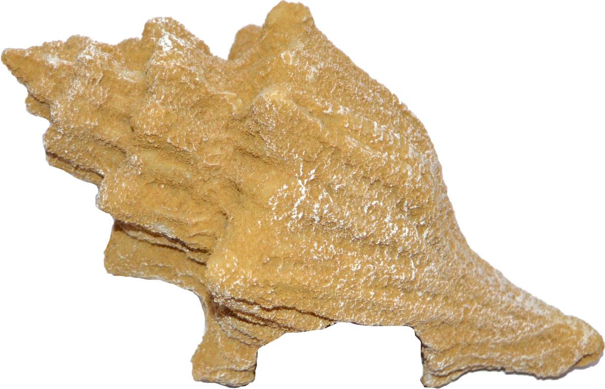 Декорация для аквариума Penn-Plax Песчаная ракушка, 20 х 11 х 12 см декорация для аквариума penn plax племя тики 15 см