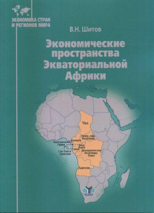 В. Н. Шитов Экономические пространства Экваториальной Африки plus stripe side asymmetrical hem skirt