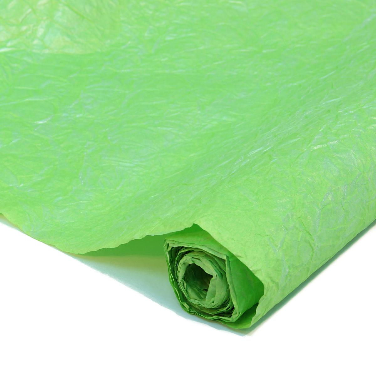 Бумага упаковочная Veld-Co Эколюкc, цвет: салатовый, серебристый, 70 см х 5 м44079Бумага Veld-Co Эколюкc - это универсальный материал дляупаковки подарков и оформления букетов. Она достаточноплотная и в тоже время пластичная. Благодаря органичнойфактуре, великолепно ложится и на нестандартные формы(круглые, овальные). Эта бумага хорошо комбинируется с другими материалами. Её можноиспользовать в качестве декоративных элементов. К ней легко подобратьаксессуары - подойдут натуральные шнуры, рафия, ленты (репсовая,шёлковая, хлопковая). Благодаря этому материалу - мастер выполнитлюбую задачу, поставленную перед ним. Ко всему прочему- бумагу в рулоне удобнее хранить, использовать,транспортировать.