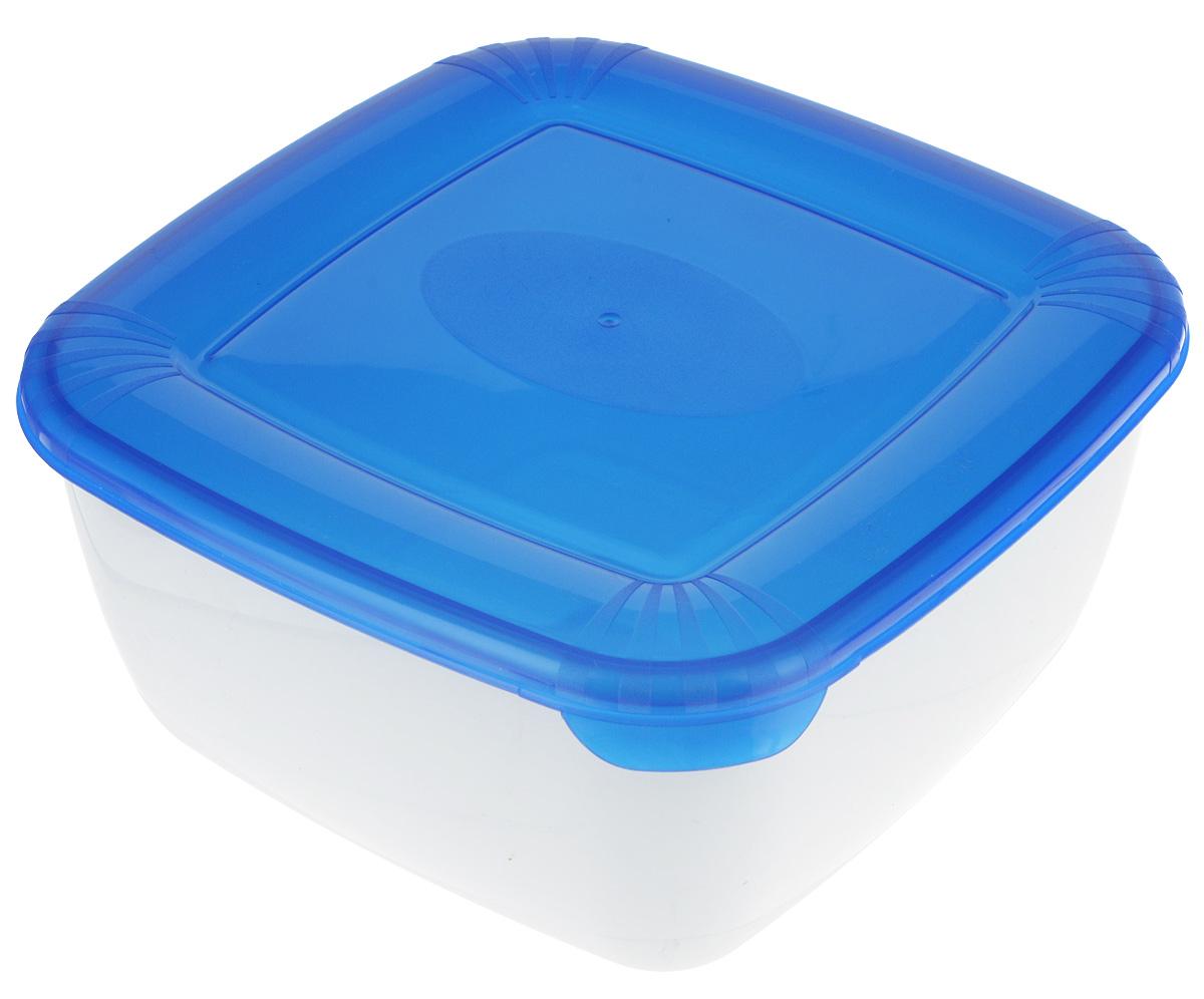 Контейнер пищевой Plast Team Polar, цвет: синий, белый, 2,5 лPT9677ГПР-10РN_синий, белый