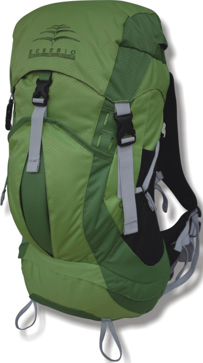 Рюкзак туристический Indigo Ford, цвет: зеленый, 40 л17479Рюкзак Indigo Ford удобен для транспортировки габаритных личных вещей (спортивной одежды и обуви и т.д.). Прочный и удобный рюкзак. Изогнутая форма лямок для комфортного прилегания к спине. Лямки регулируются по длине и покрыты сетчатой тканью для оптимального комфорта. Идеален для занятий спортом. Материал: полиэстер 300D.