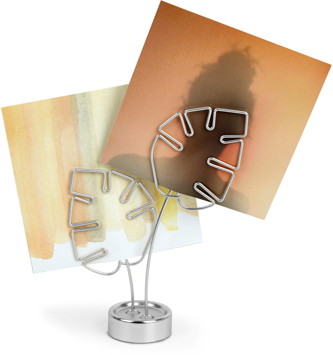Держатель для фотографий Umbra Leaflet, цвет: хром umbra держатель для фотографий leaflet хром
