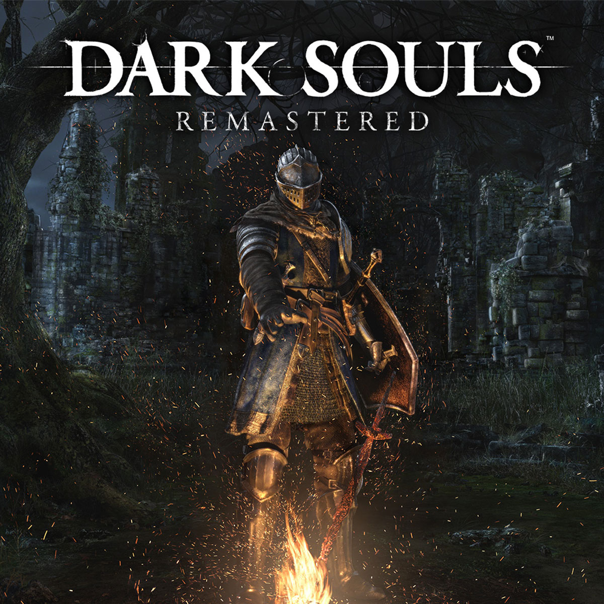 Zakazat.ru Dark Souls: Remastered (Nintendo Switch)