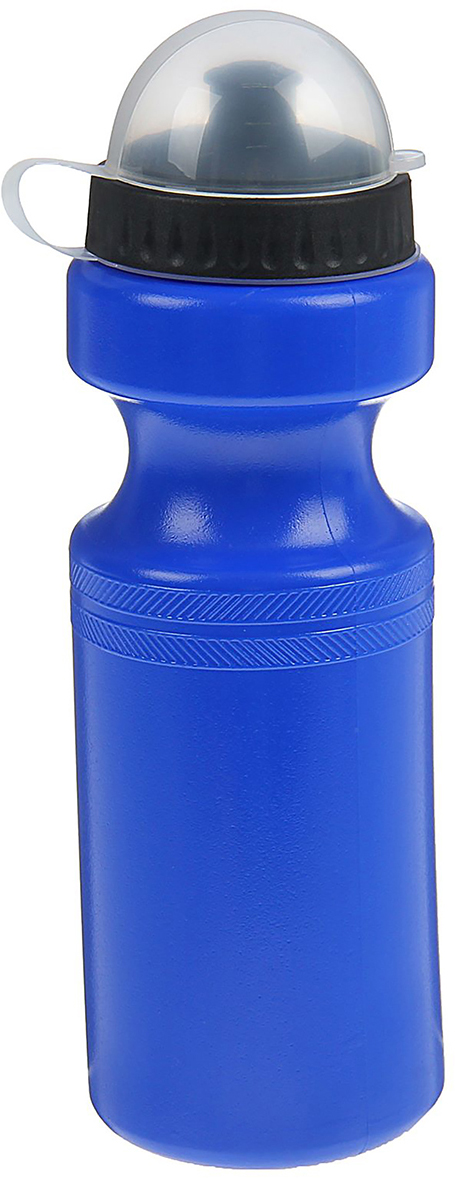 Бутылка велосипедная, цвет: синий, 750 мл1401846_синяяОт качества посуды зависит не только вкус еды, но и здоровье человека. Бутылка - товар, соответствующий российским стандартам качества. Любой хозяйке будет приятно держать его в руках. С данной посудой и кухонной утварью приготовление еды и сервировка стола превратятся в настоящий праздник.