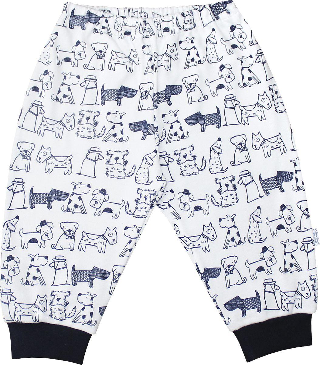 Штанишки для мальчика Веселый малыш Верные друзья, цвет: белый, темно-синий. 33320/вд-F (1)_собачки. Размер 86 брюки джинсы и штанишки веселый малыш штанишки мото