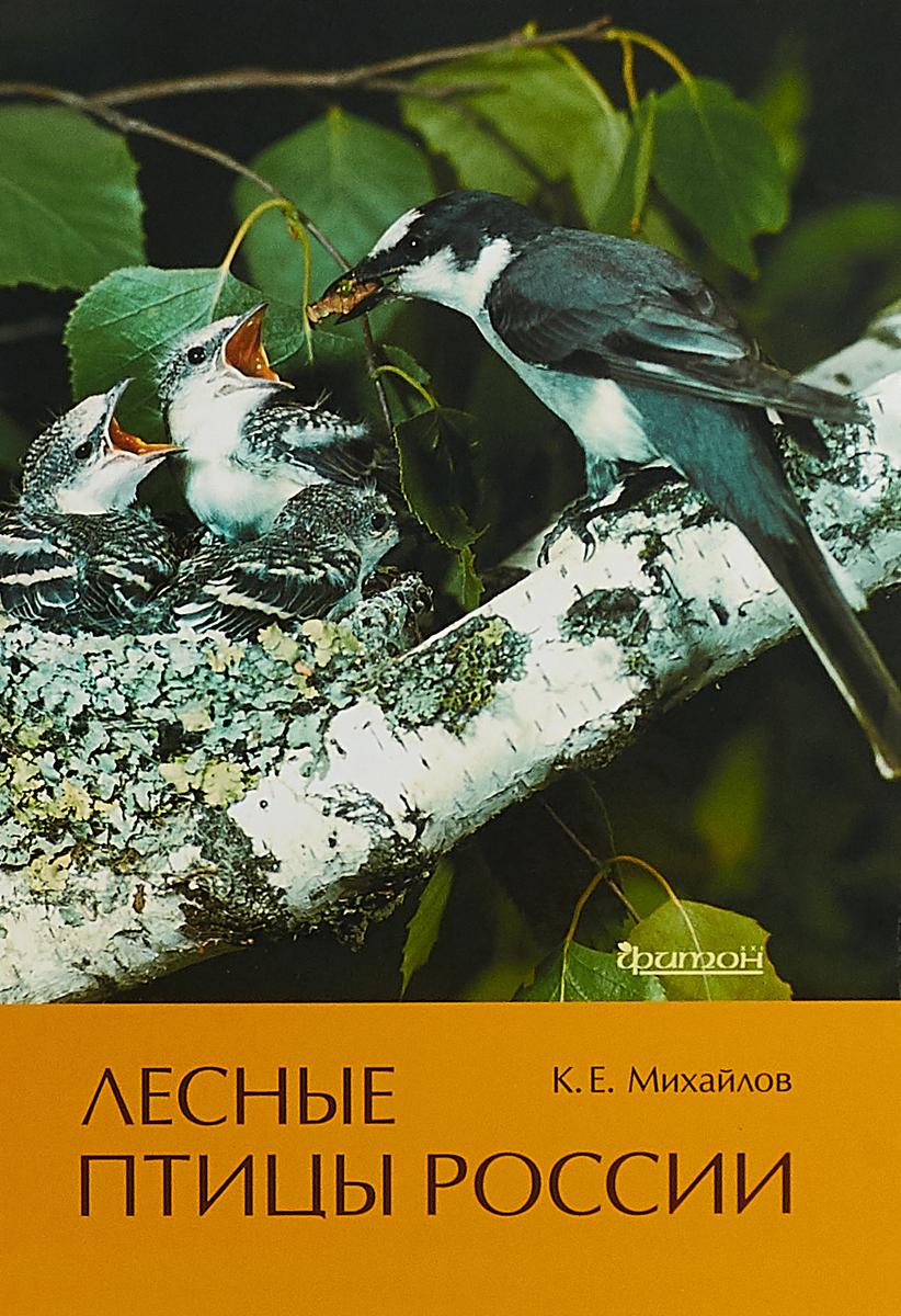 , Лесные птицы России