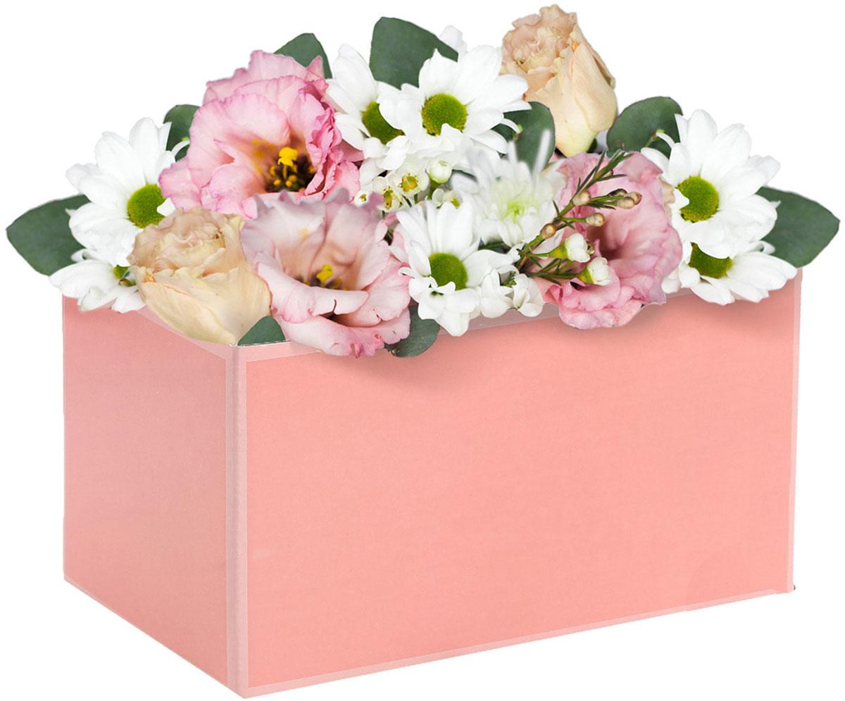 Коробка подарочная Дарите Счастье Персиковая нежность, складная, 12 х 17 х 10 см2969295Любой подарок начинается с упаковки. Что может быть трогательнее и волшебнее, чем ритуал разворачивания полученного презента. И именно оригинальная, со вкусом выбранная упаковка выделит ваш подарок из массы других. Она продемонстрирует самые тёплые чувства к виновнику торжества и создаст сказочную атмосферу праздника. Складная коробка — это то, что вы искали.