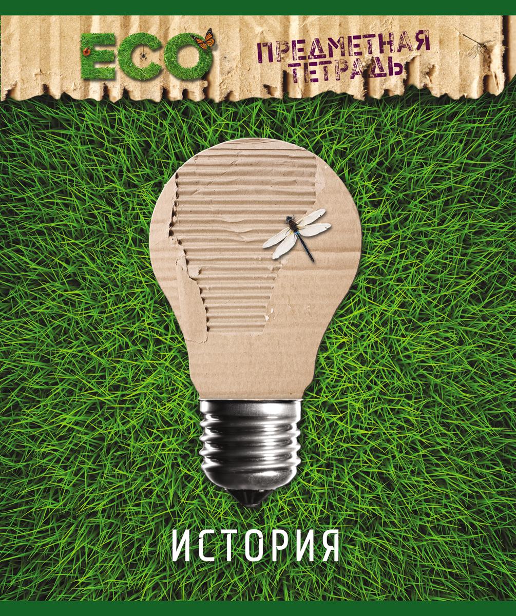 Magic Lines Тетрадь Эко История 48 листов в клетку magic lines тетрадь новая великолепная тетрадь 12 листов в клетку цвет зеленый