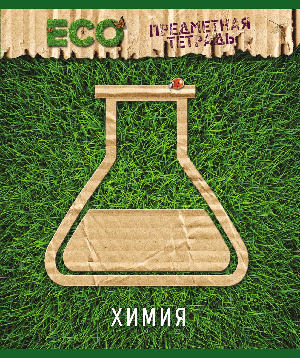 Magic Lines Тетрадь Эко Химия 48 листов в клетку magic lines тетрадь новая великолепная тетрадь 12 листов в клетку цвет зеленый