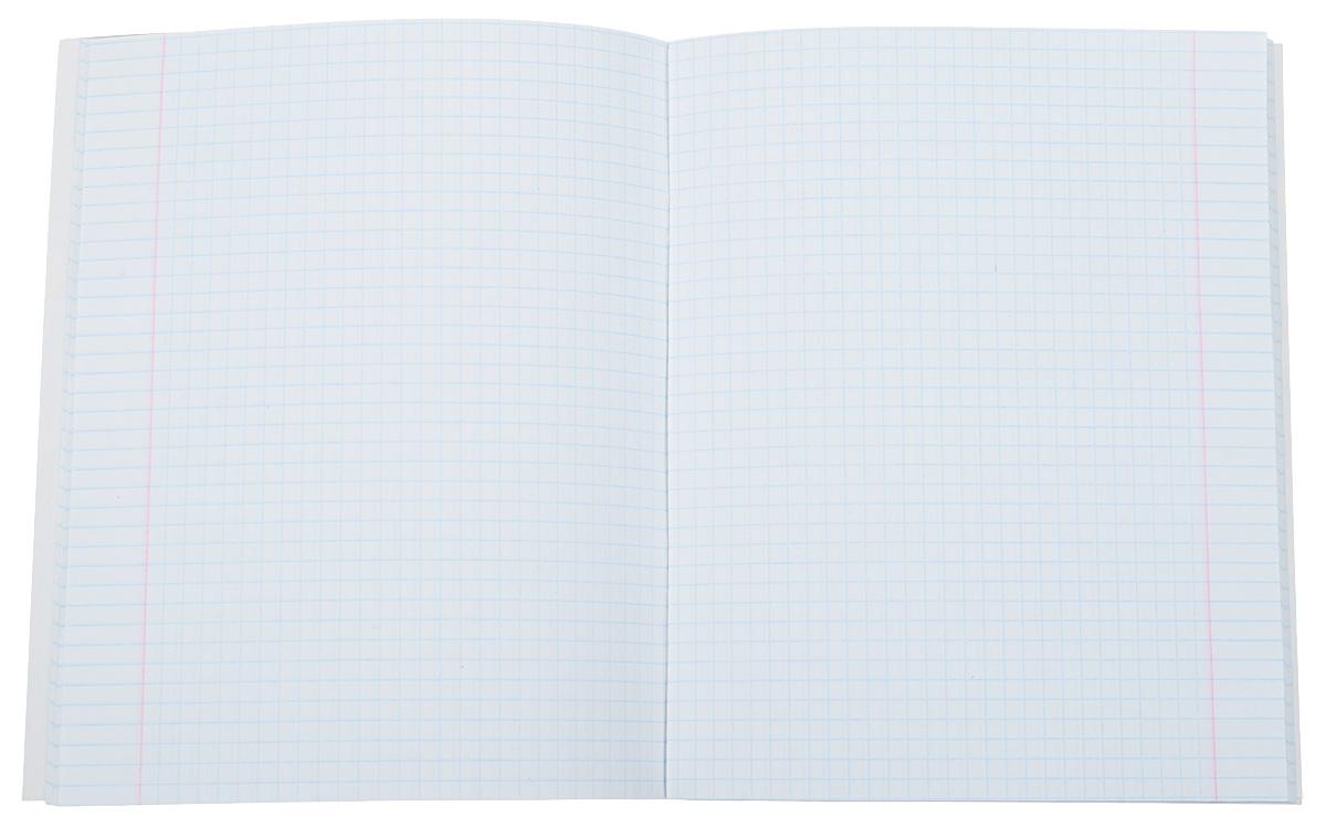 Тиснение фольгой придает изыска дизайну обложки. Оптимальная плотность обложки гарантирует качественный внешний вид на всем сроке использования изделия. Если Вы хотите каждый раз с удовольствием возвращаться к записям в тетради, то продукция Канц-Эксмо делается специально для Вас!