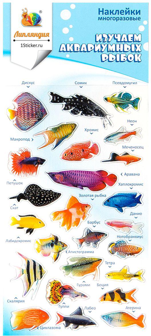 Липляндия Набор наклеек Рыбы 1