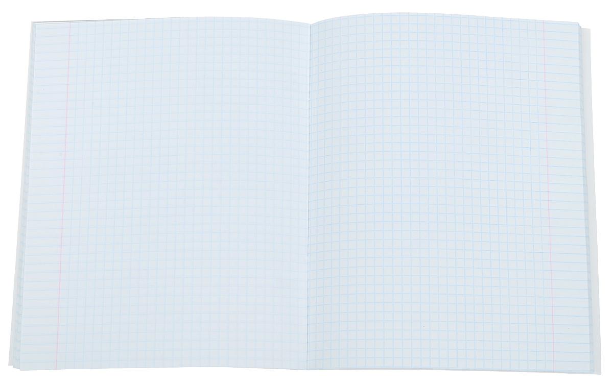 Комплект тетрадей 48 листов на скрепке Полёт идей (графика) формата А5 незаменимый инструмент для учеников старших классов и студентов. Прочная обложка из мелованного картона с матовой ламинацией делает ее более долговечной, выборочный лак придает дизайну эстетичность и улучшает зрительное восприятие.