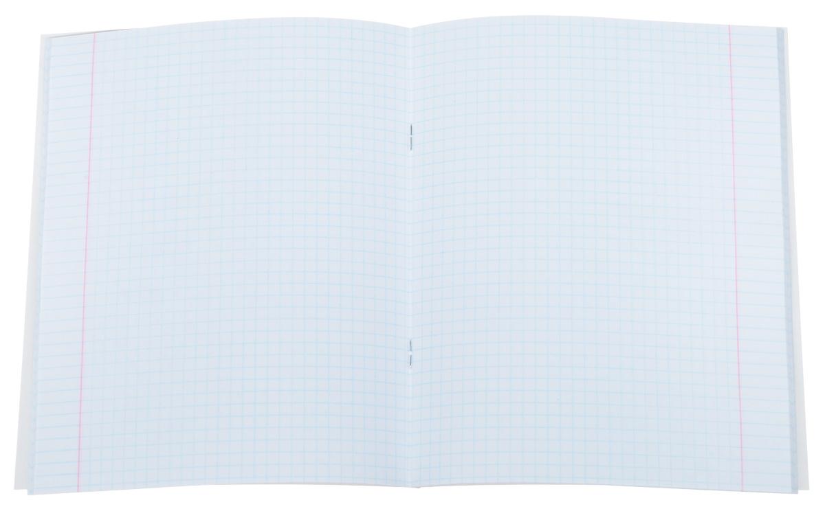 Комплект тетрадей 48 листов на скрепке Фото на паспорт (собаки) формата А5 незаменимый инструмент для учеников старших классов и студентов. Прочная обложка из мелованного картона с матовой ламинацией делает ее более долговечной, выборочный лак придает дизайну эстетичность и улучшает зрительное восприятие.