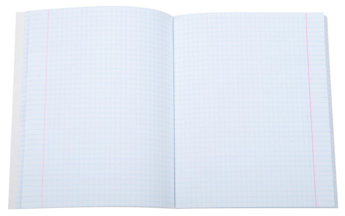 Тетради А5, серии DIY (Do it yourself. Сделай сам) новинка от компании Канц-Эксмо. Особенность данных серий в том, что тетрадь получает «вторую жизнь» - после использования заднюю часть обложки можно вырезать интересные и оригинальные открытки, бирки, валентинки. На обложке тетради стоит соответствующая иконка о наличии дополнительного интерактива.