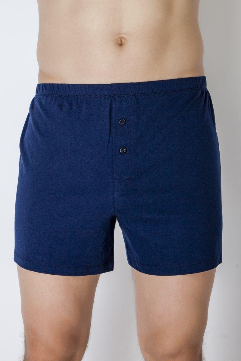 Купить Трусы-шорты мужские Idilio, цвет: синий. THM03. Размер M (48)