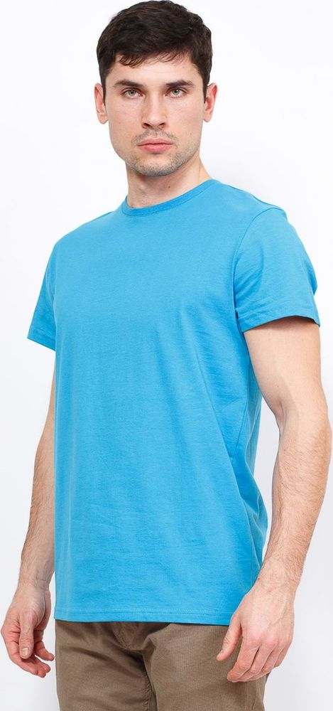 Купить Футболка мужская Greg, цвет: голубой. TS521. Размер 54