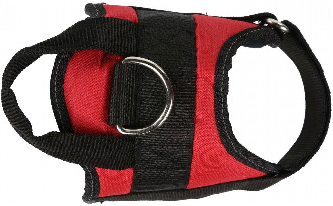 Шлейка Regatta Refl Dog Harness, для собак, цвет: красный, обхват груди 55-65 см. Размер MRDE002Удобная шлейка для собак, равномерное распределение нагрузки. Прочная верхняя ручка для контроля за животным. Стальное кольцо для соединения с поводком.Светоотражающая отделка для прогулок в условиях низкой освещенности для дополнительной безопасности. Регулируемый ремень обеспечивает плотную посадку. Доступны 3 размера (обхват груди) - 40-45 см, 55-65 см, 75-100 см.