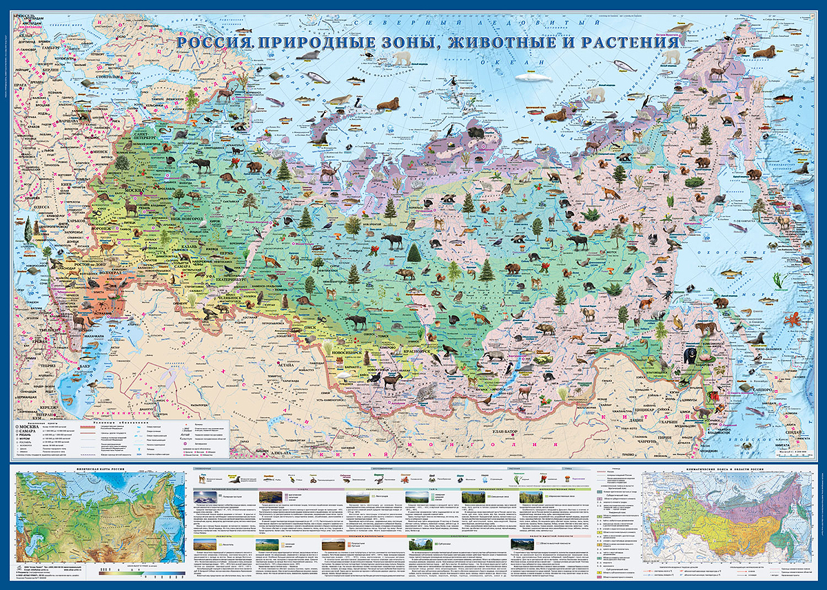 Россия. Природные зоны. Животные и растения. Карта настенная, ламинированная, масштаб 1: 6 200 000