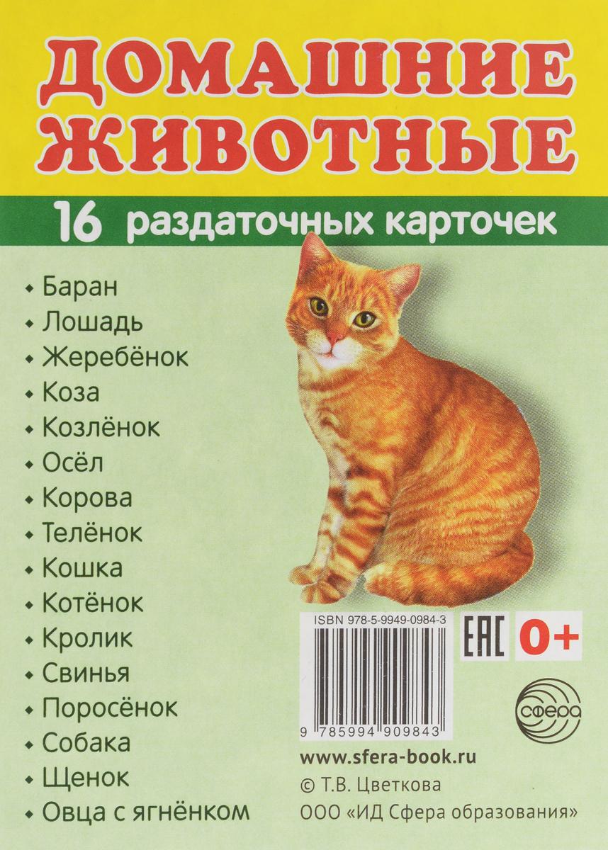 Домашние животные. Раздаточные карточки дидакт карточки домашние животные и их детеныши