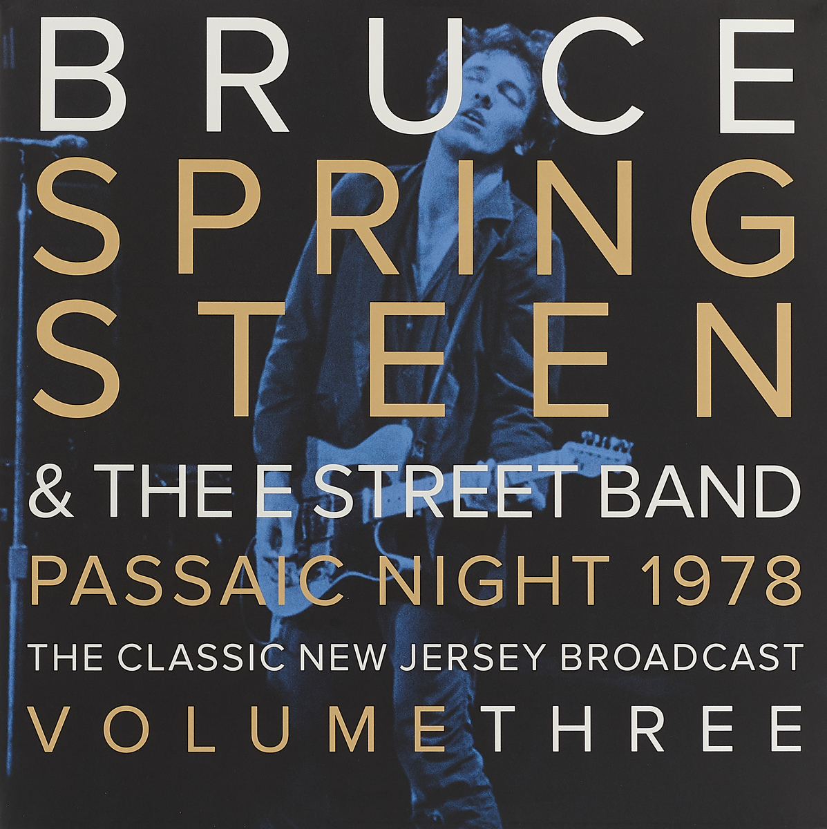 Брюс Спрингстин Bruce Springsteen. Passaic Night 1978 The Classic New Jersey Broadcast Volume Three (2 LP) цена