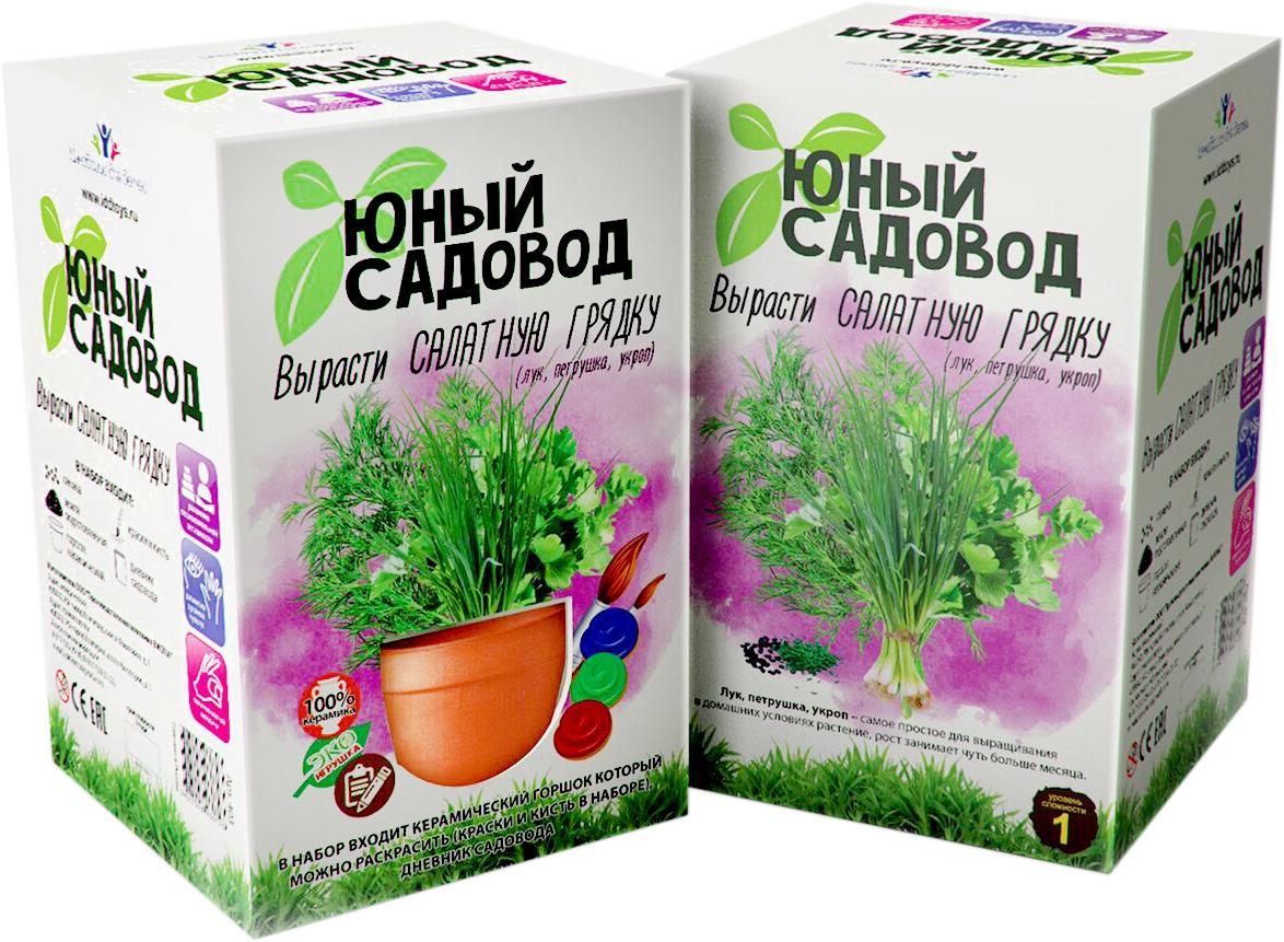 Висма Набор для выращивания Вырасти салатную грядку