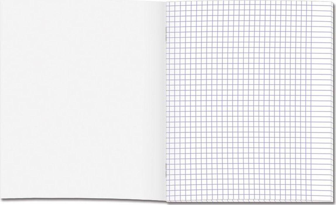 Тетрадь школьная представлена вформате А5 (170?203мм). Блок изготовлен изофсетной бумаги 100% белизны, состоит из12 листов вклетку, сполями. Обложка выполнена извысококачественного целлюлозного мелованного картона. Дизайн обложки— «Самолетик». Школьная тетрадь скреплена спомощью скрепок.