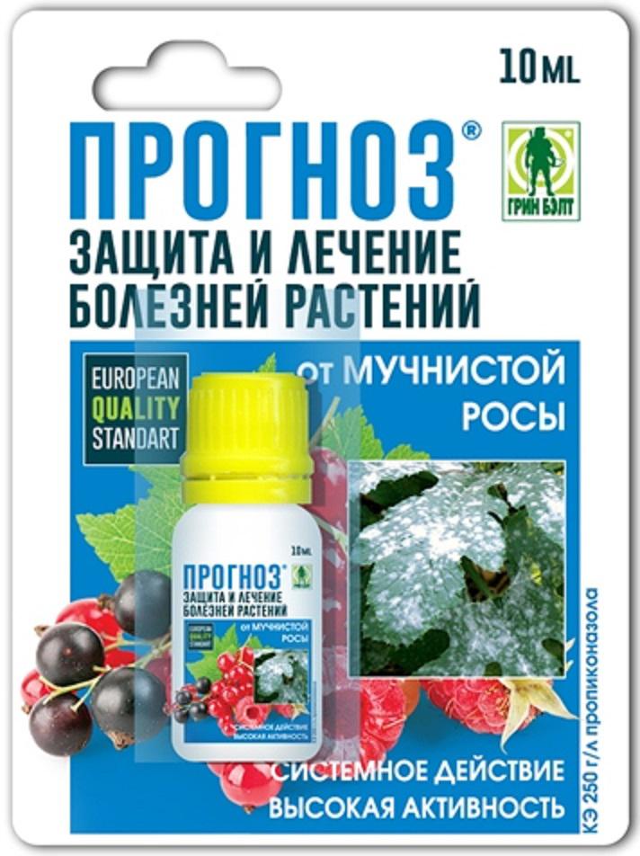 Защищает и лечит от мучнистой росы и ржавчины на ягодных и цветочных культурах.