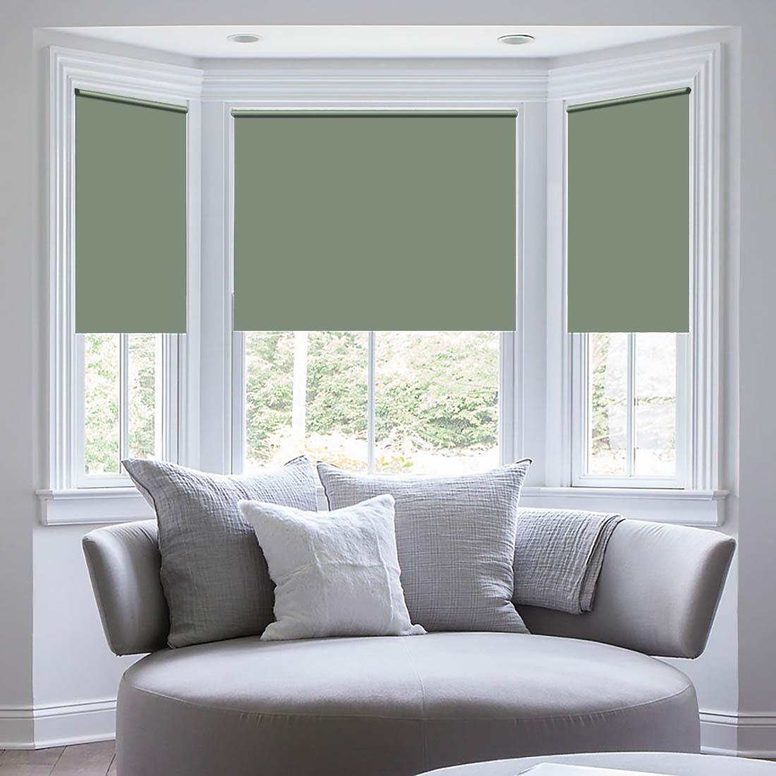 """Штора рулонная Sleep iX """"Eclipce"""", цвет: зеленый, серебристый, высота 172 см, ширина 68 см"""