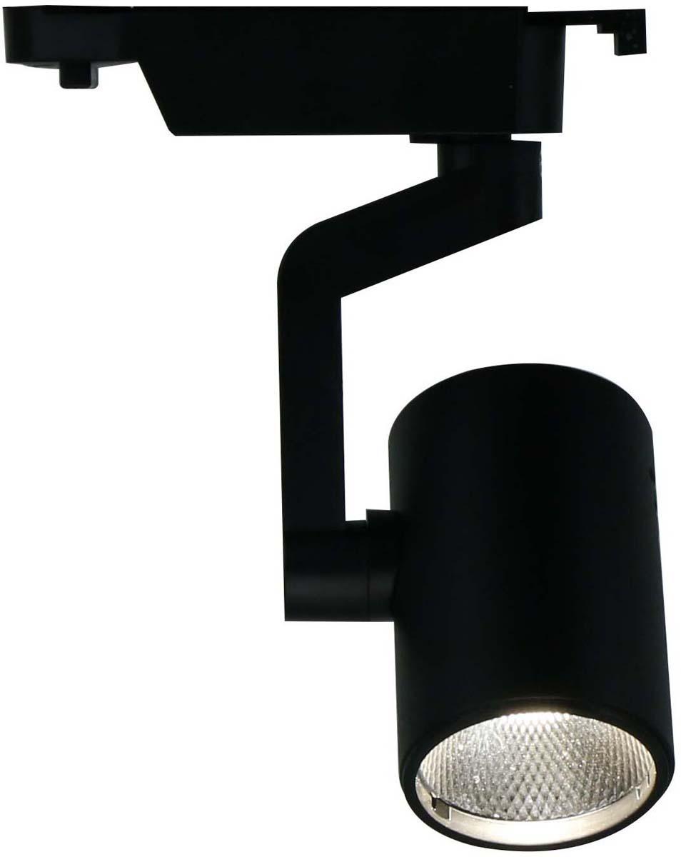 Светильник потолочный Arte Lamp Traccia, цвет: черный, 1 х LED, 10 W. A2310PL-1BKA2310PL-1BK