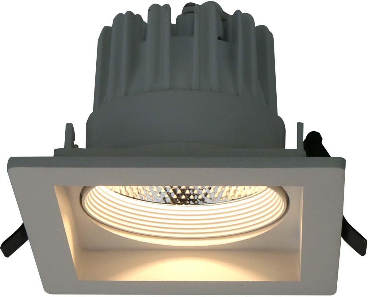 Светильник встраиваемый Arte Lamp Privato, цвет: белый, 1 х LED, 7 W. A7007PL-1WH встраиваемый светильник arte lamp privato a7007pl 1wh
