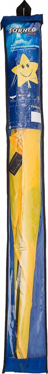 Воздушный змей Torneo, 100 х 90 см