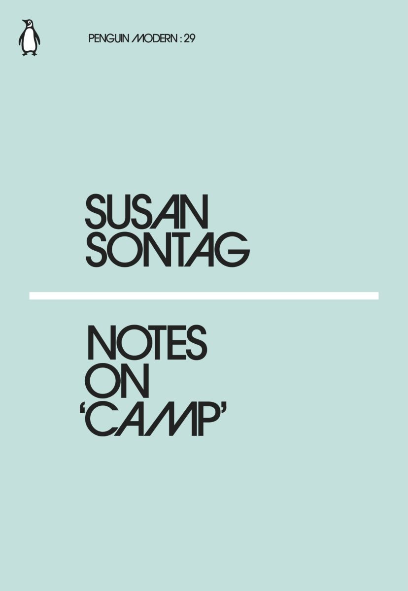 Notes on Camp stories and essays of mina loy