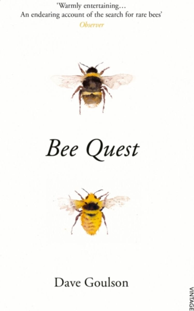 Bee Quest the murderer s daughter