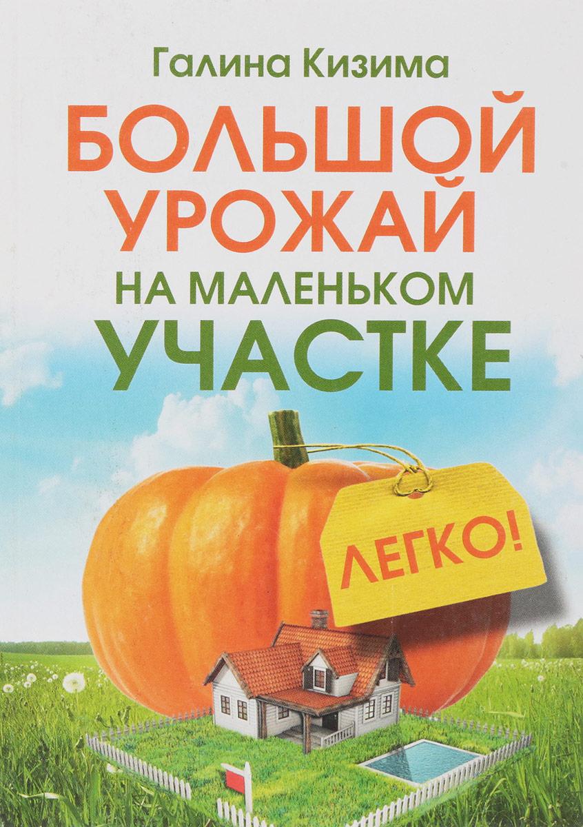 купить Большой урожай на маленьком участке. Легко! по цене 122 рублей