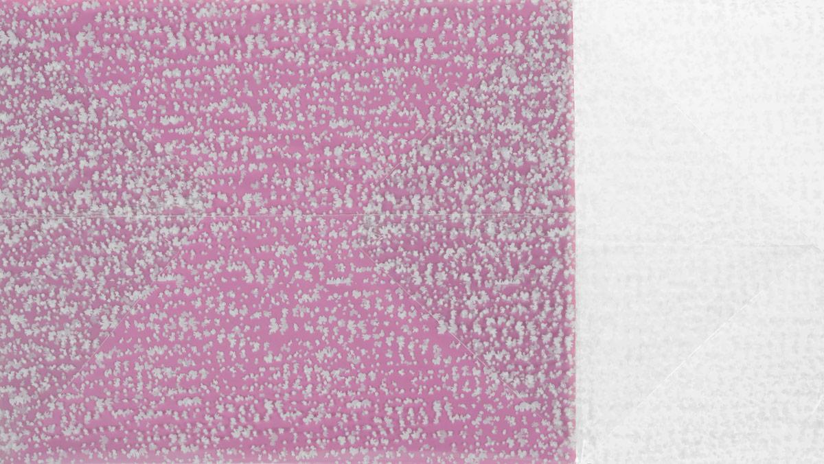 Пакет подарочный, цвет: розовый, 22 х 28 х 80 см. 819054