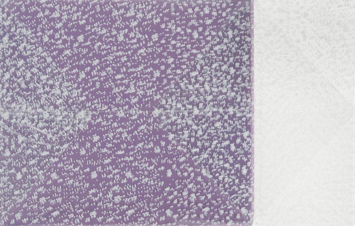 Пакет подарочный, цвет: сиреневый, 22 х 28 х 80 см. 819054 пакет подарочный арт и дизайн вояж цвет мультиколор 36 х 26 х 11 5 см 3092217