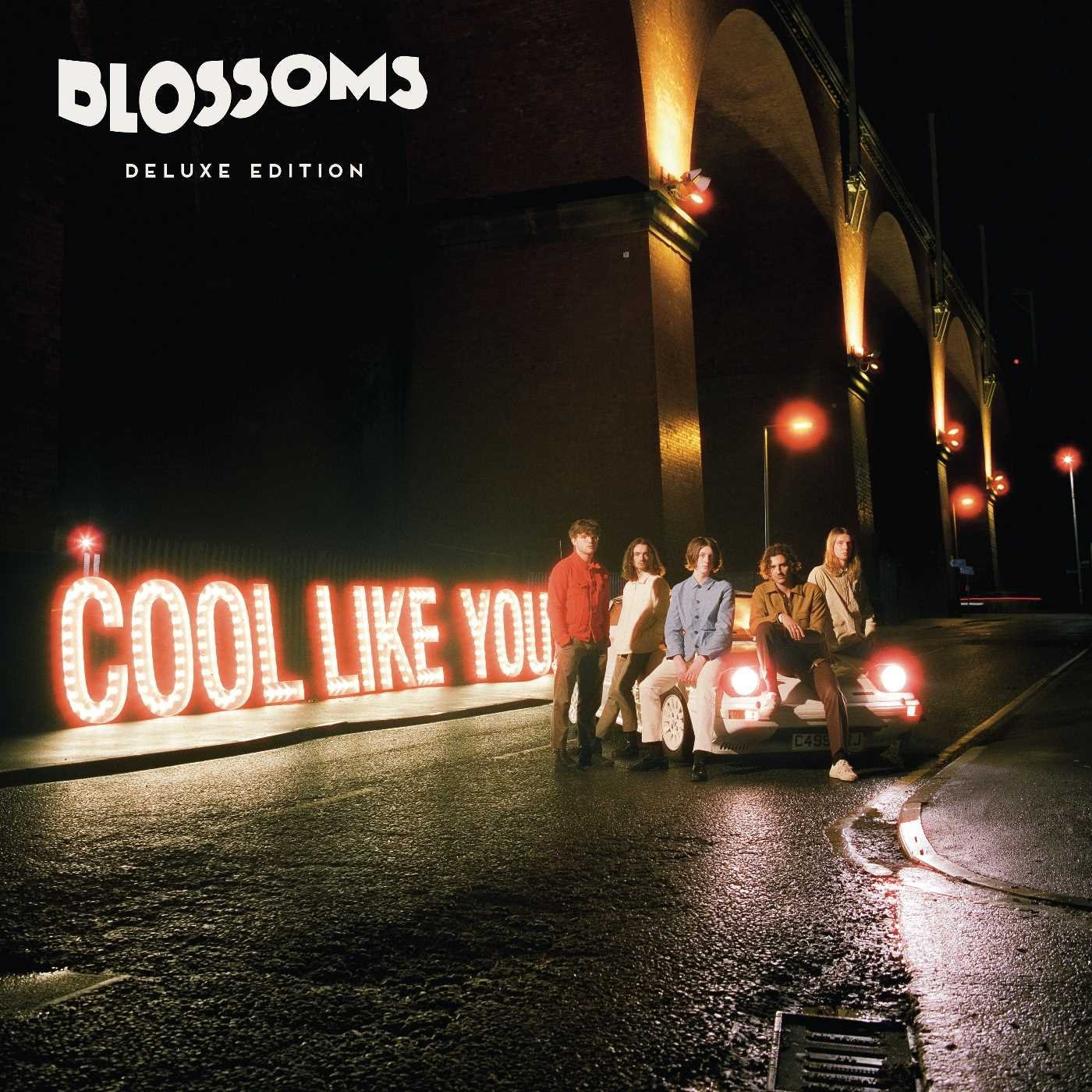 Blossoms.  Cool Like You (LP) Virgin Emi Records