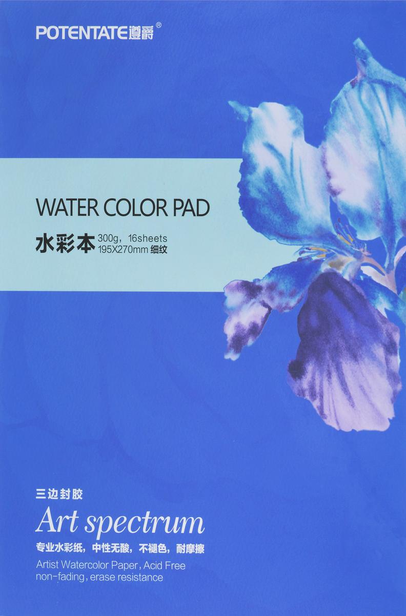 Potentate Бумага для рисования Watercolor Block Smooth Surface 16 листов цвет синий 270 x 195 мм -  Бумага и картон