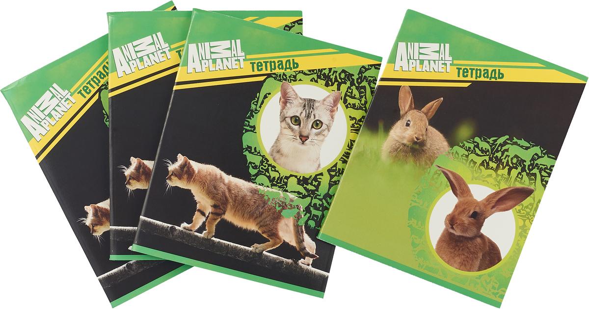 Action! Набор тетрадей Animal Planet Собаки 96 листов в клетку 4 шт action набор тетрадей 18 листов в линейку 5 шт