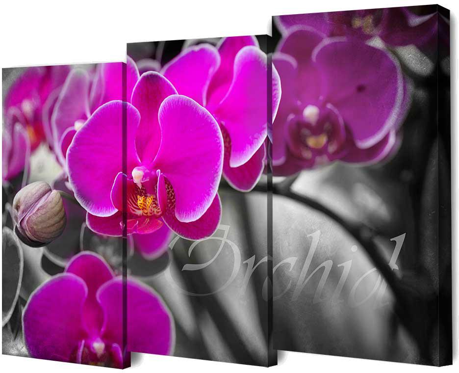 """Картина модульная """"Toplight"""", 100 x 150 см. TL-M2073"""