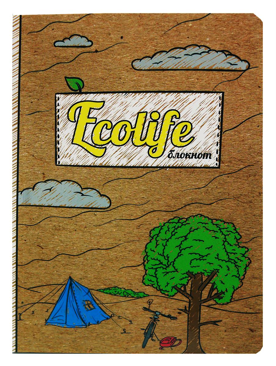 Prof Press Блокнот Ecolife-1 64 листа е ю мишняева дневник педагогических наблюдений