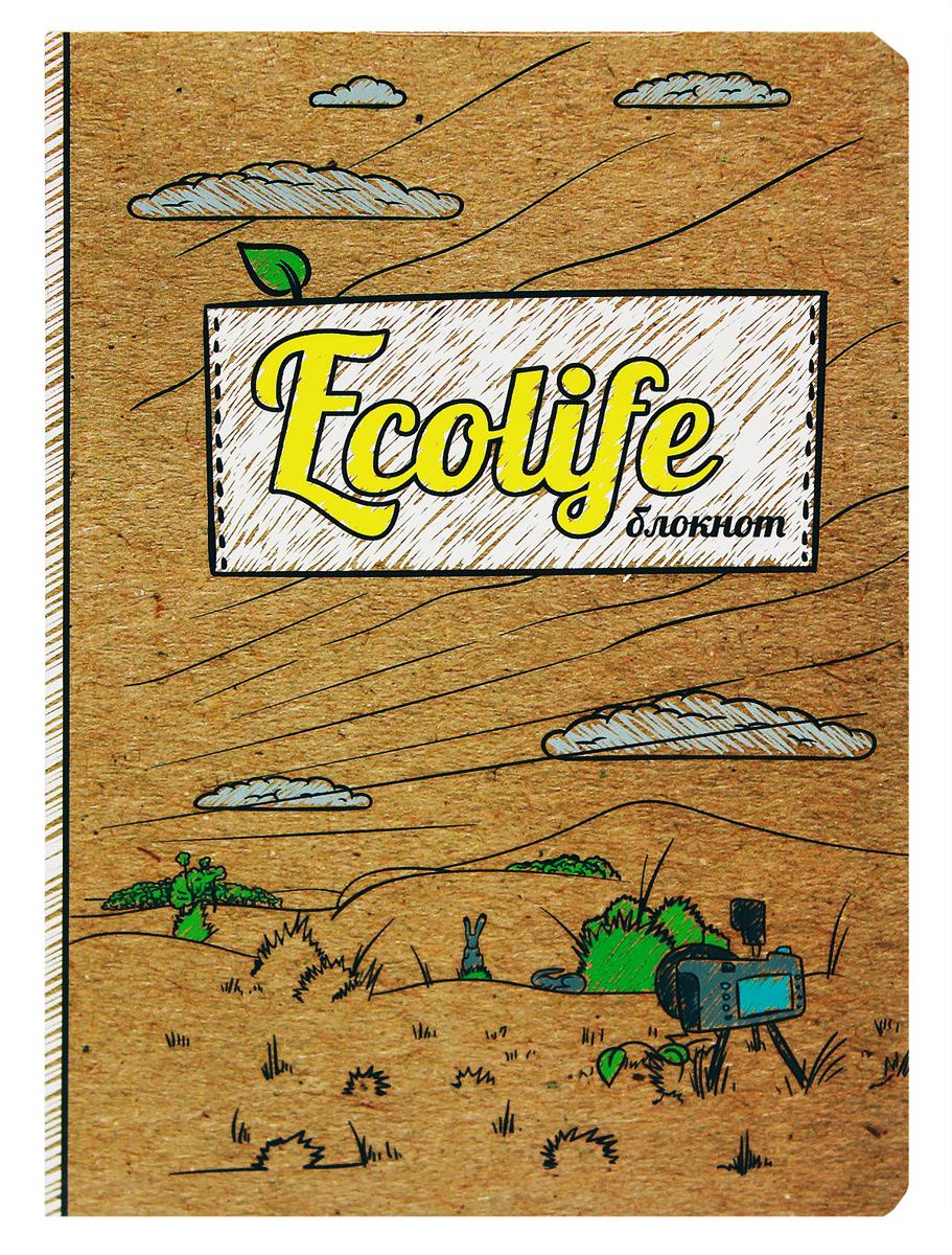 Prof Press Блокнот Ecolife-3 64 листа е ю мишняева дневник педагогических наблюдений