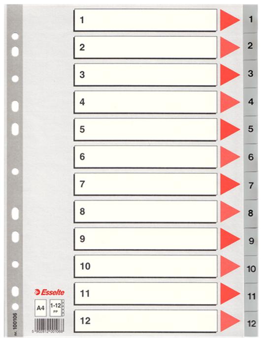 Esselte Разделитель для папки А4 1-12 цвет серый100106Разделитель для папки выполнен из прочного пластика. Разделитель предназначен для удобного хранения и сортировки документов. Большое поле на титульном листе для записи сведений о содержании рубрик.