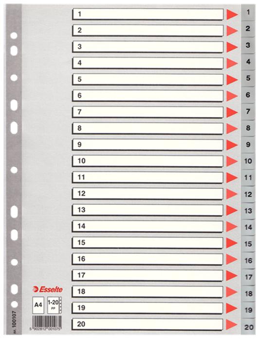 Esselte Разделитель для папки А4 1-20 цвет серый
