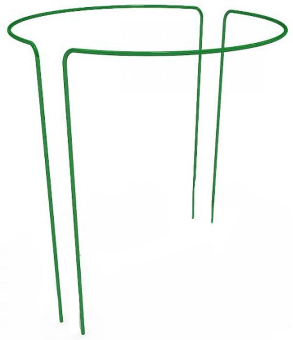 Опора для растений Garden Dreams Круг, диаметр 0,5 м, высота 0,9 м 3 6 garden dreams 4620769392725